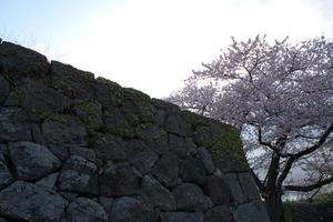 kazyou5.JPGのサムネール画像