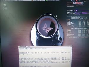P5070018.JPG