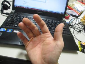 wagomu05.JPGのサムネール画像
